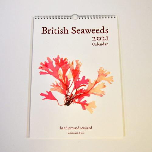 British seaweeds calendar 2021