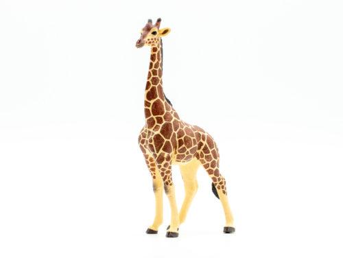 Papo giraffe