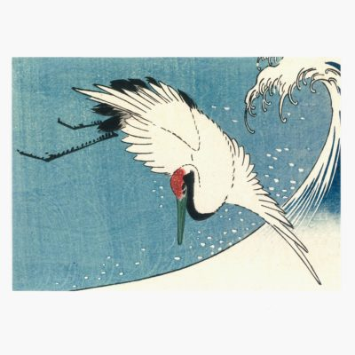 Crane flying over wave