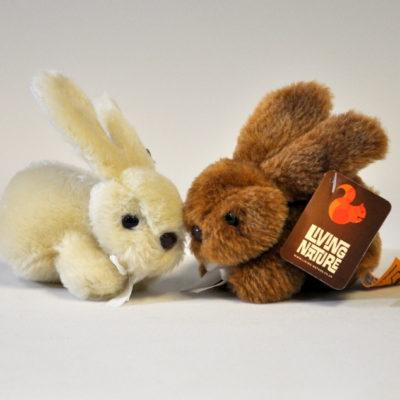 Fluffy baby rabbit pair