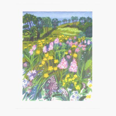 A rare meadow