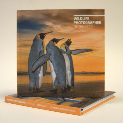Wildlife Photographer of the Year 2022 desk diary